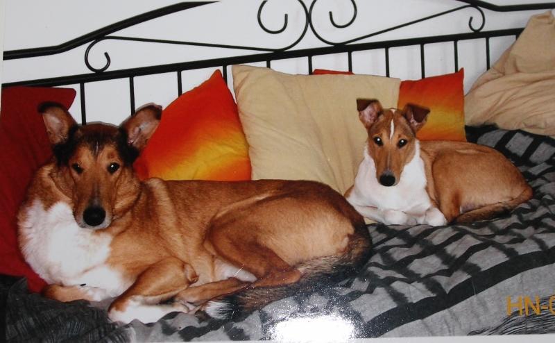 Kantakoiria BIlbo ja Alda 2005